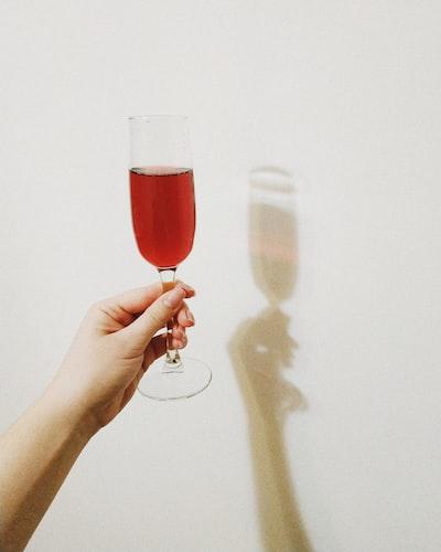 4637. Bor,szőlő, borászatok