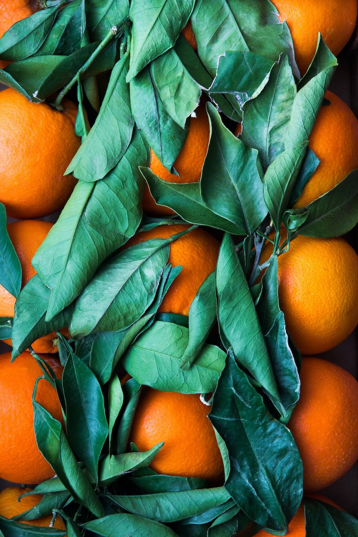 pile of round orange fruits