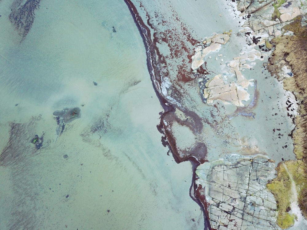 aerial view of shore