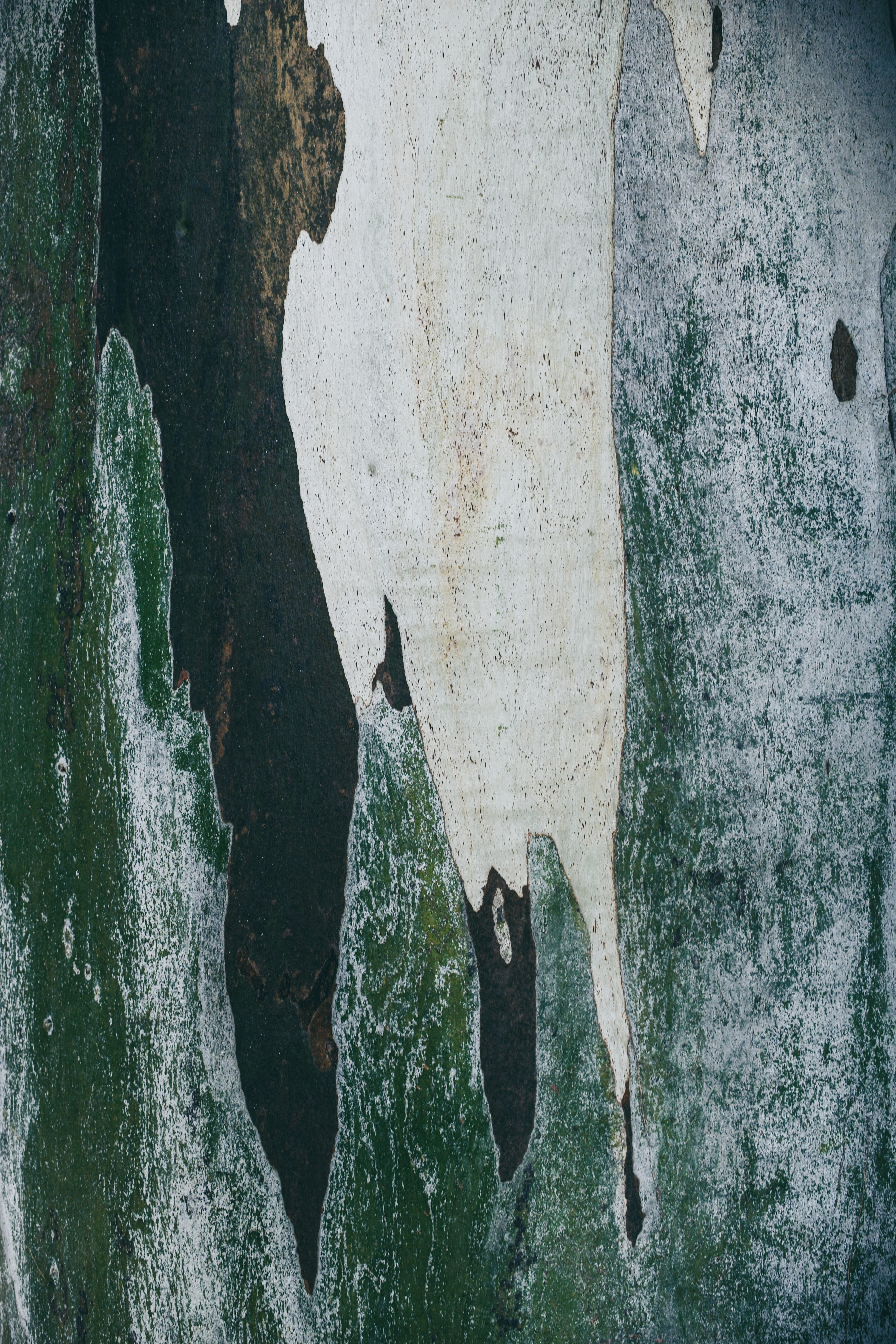 brown and green abstract painting