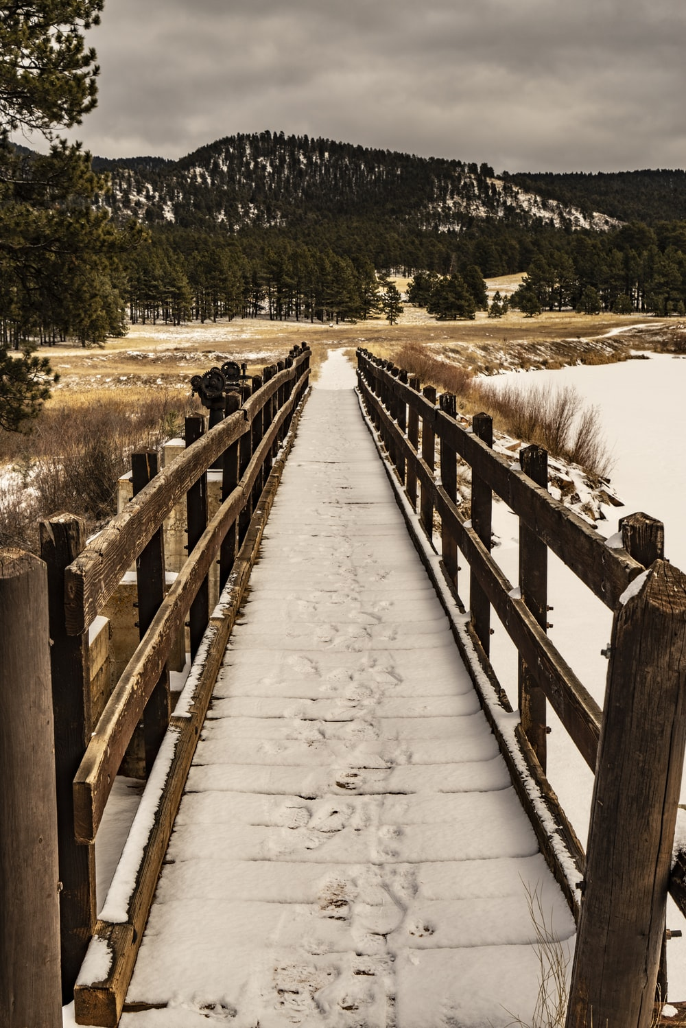 clear pathway covered with snow