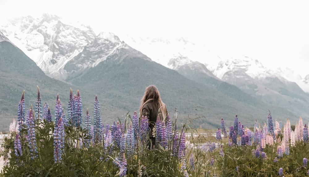 person standing near purple flowers