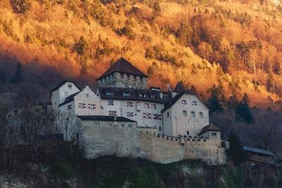 white concrete building during daytime liechtenstein zoom background