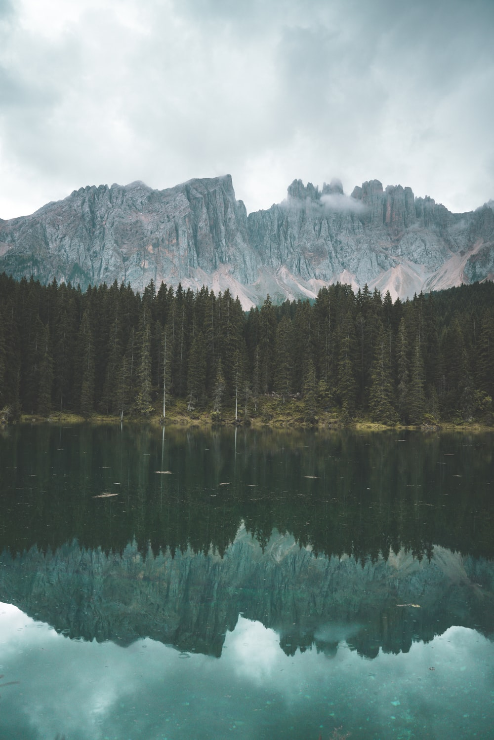 trees reflecting on body of water near mountains