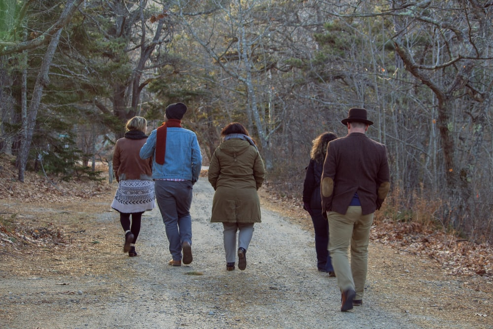 five people walking between trees