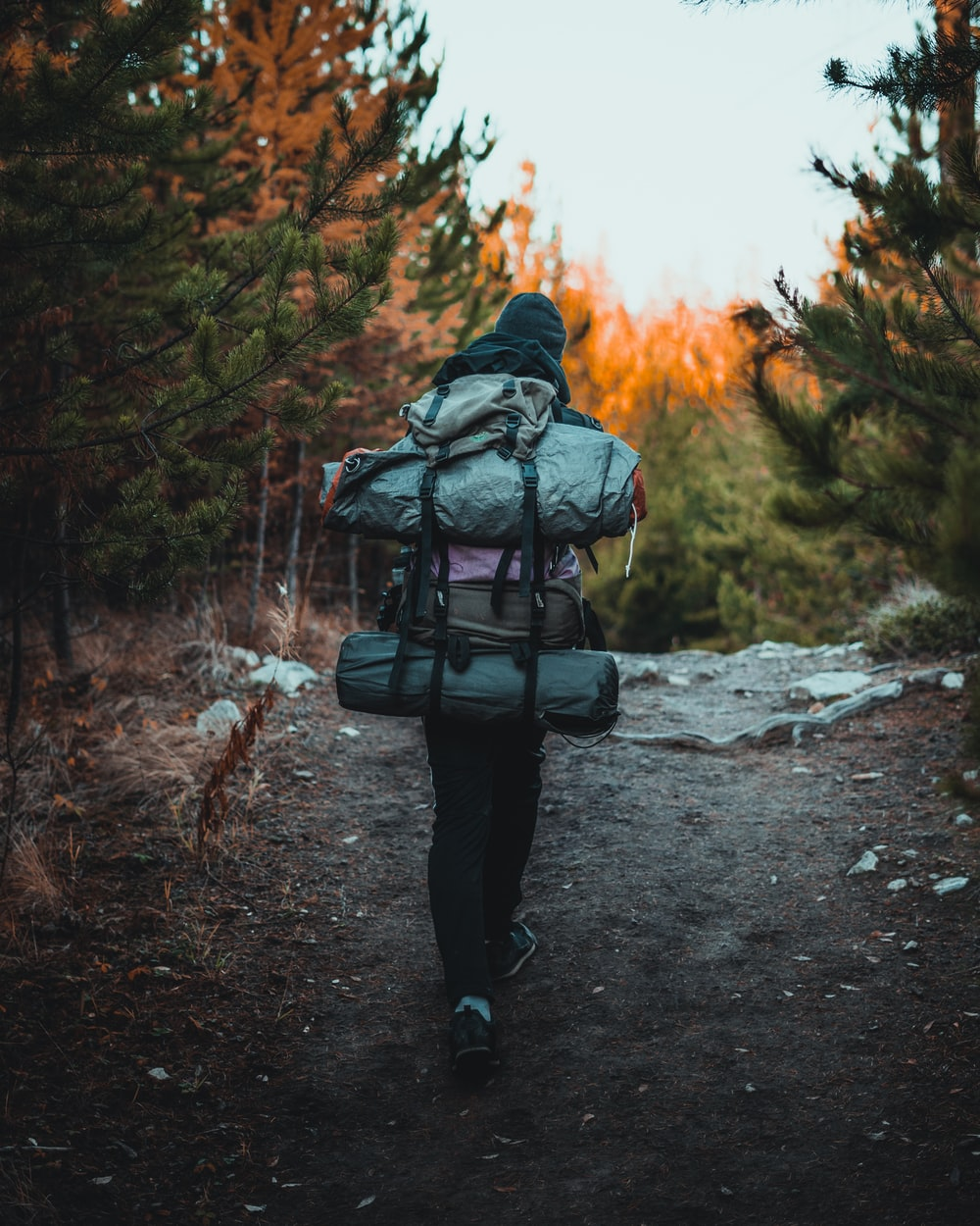 woman wearing hiking bags