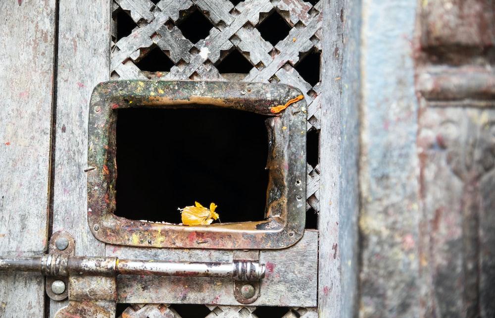 closed grey wooden door