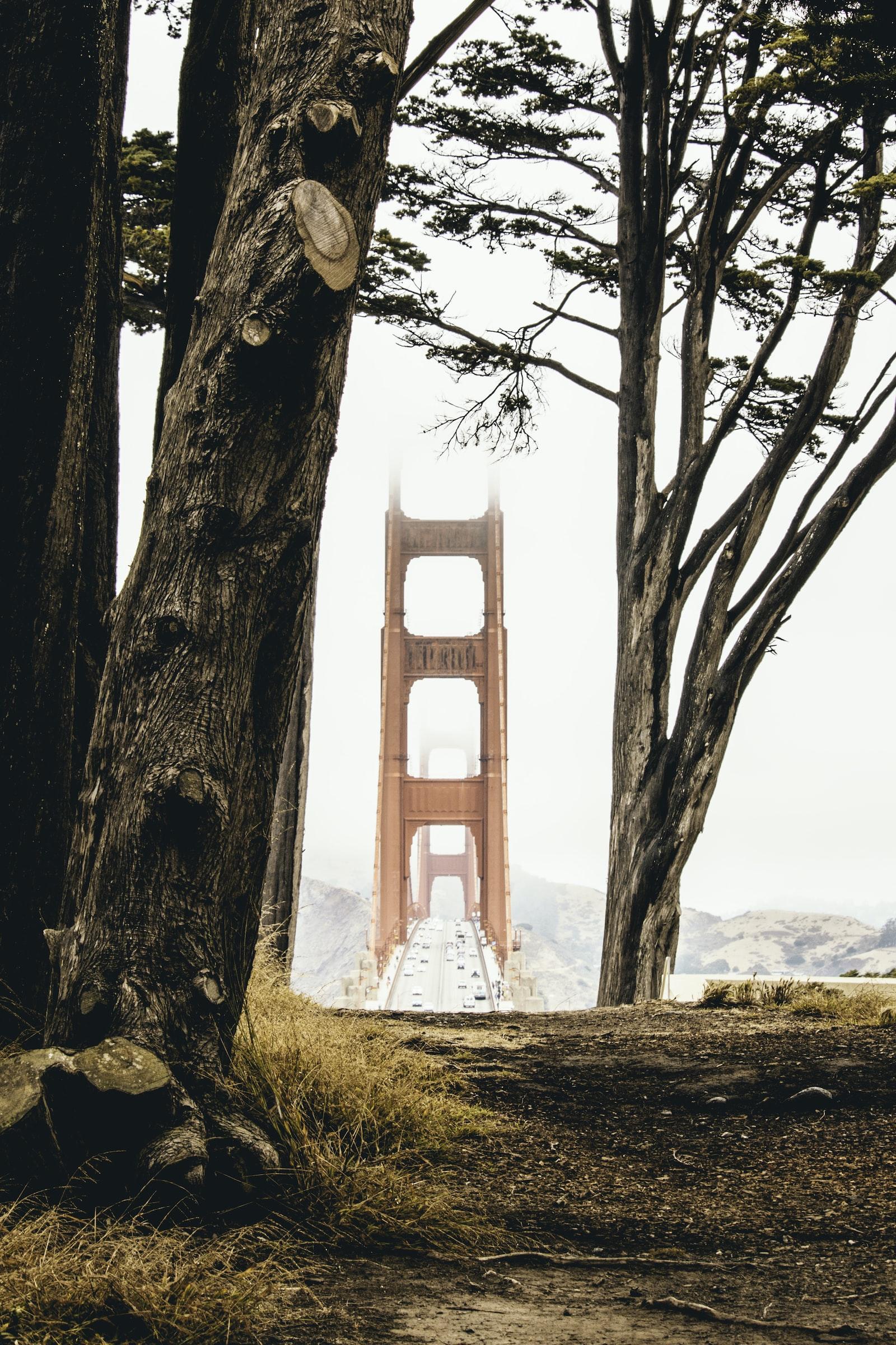 """Canon EOS 70D sample photo. """"Golden gate bridge during"""" photography"""