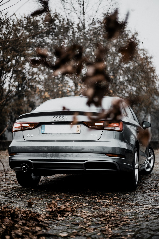 gray Audi vehicle near trees