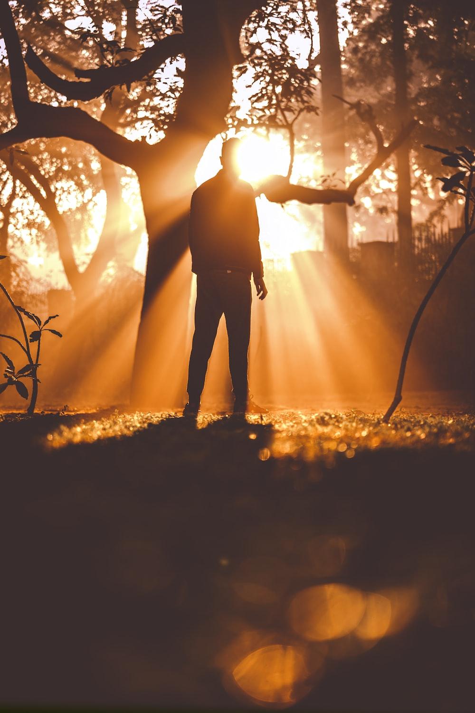 man standing near tree