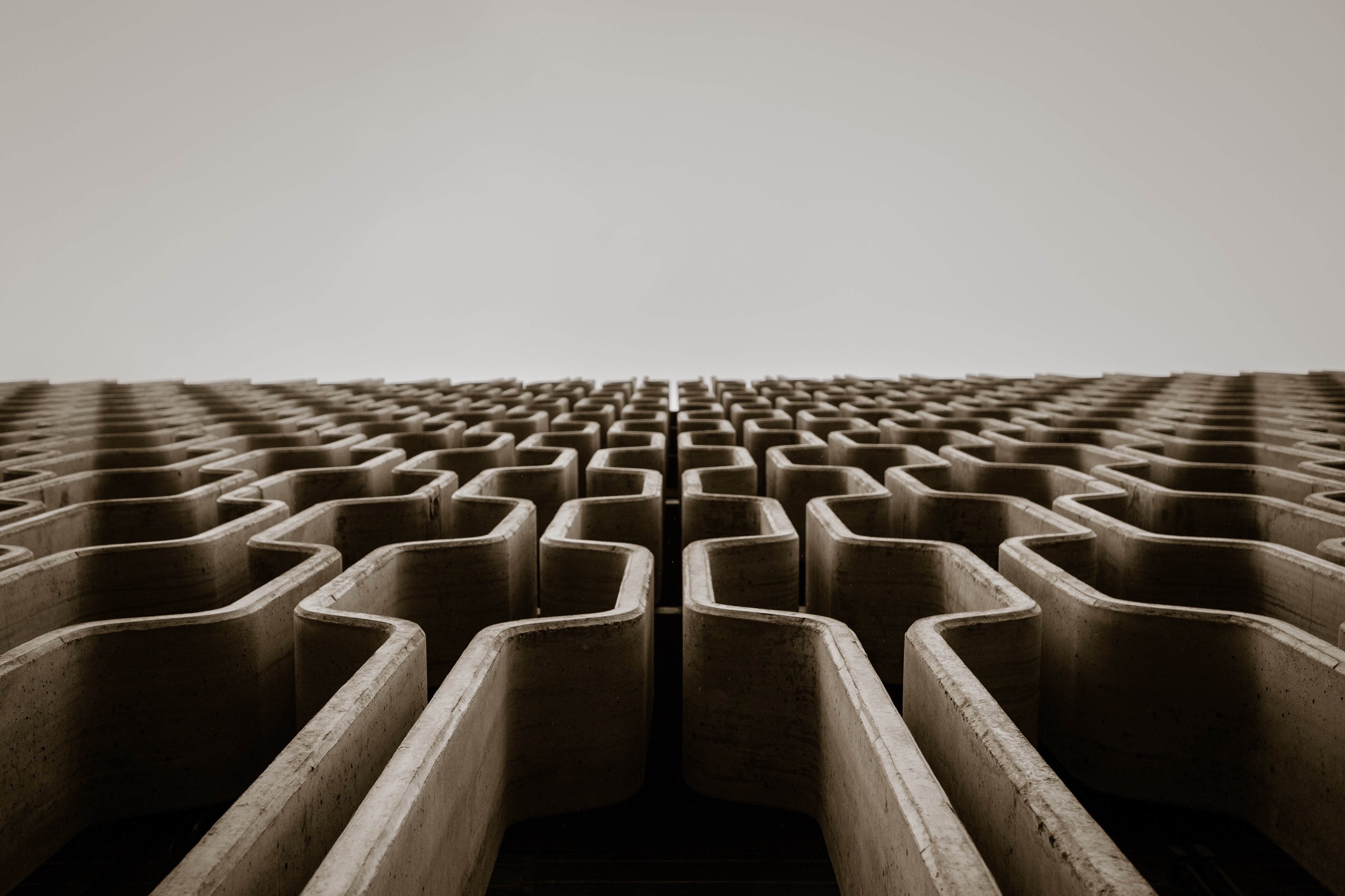 The author added a photo of a maze extending beyond the horizontal line.
