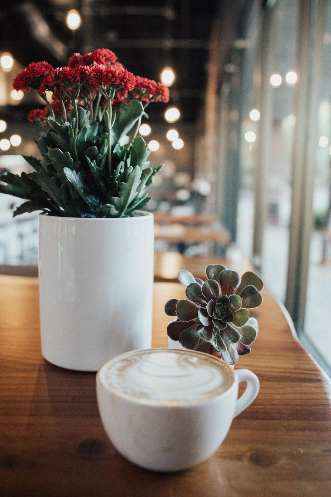 White Ceramic Mug Beside White Ceramic Flower Vase With Green Plant Photo Free Cup Image On Unsplash