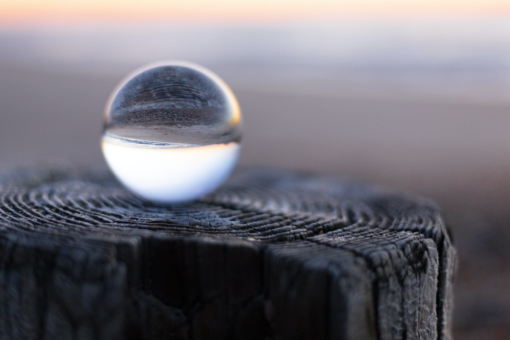 ball on wood stump in selective focus photography