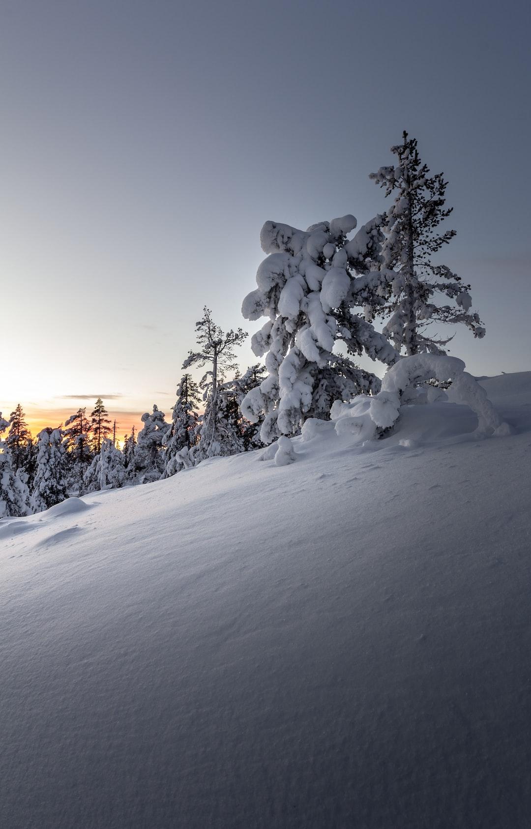 Snow pose
