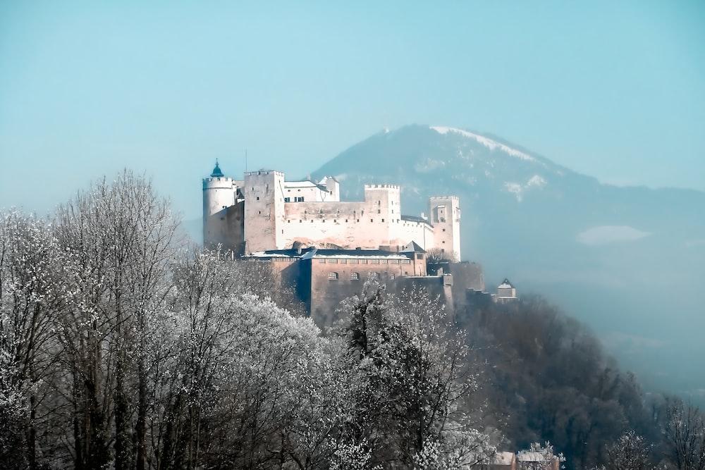 white castle on mountain