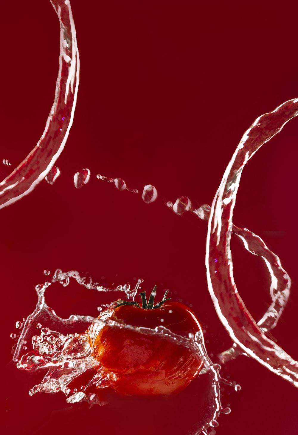 Tomato | HD photo by Hessam Hojati (@hessamhoajti) on Unsplash