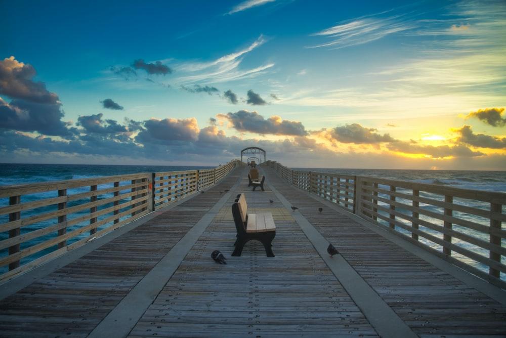 birds on bridge during sunset