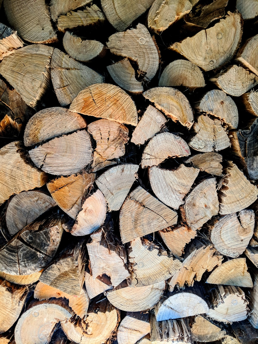 pile of firewood lot