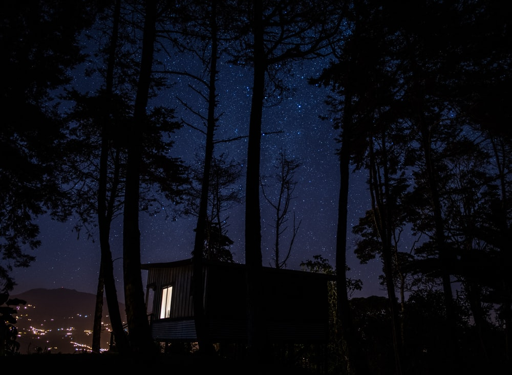 brown house surrounded by trees during nighttime \