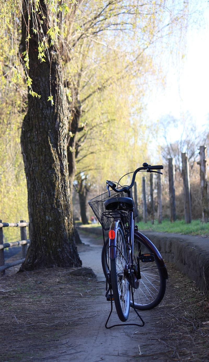 學騎腳踏車