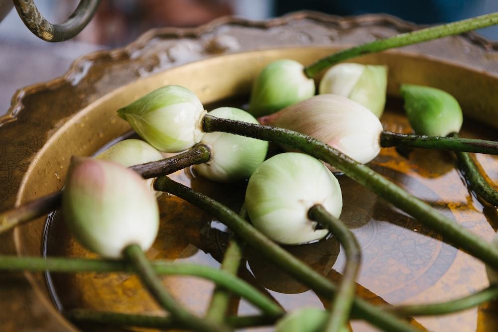круглые зеленые фрукты
