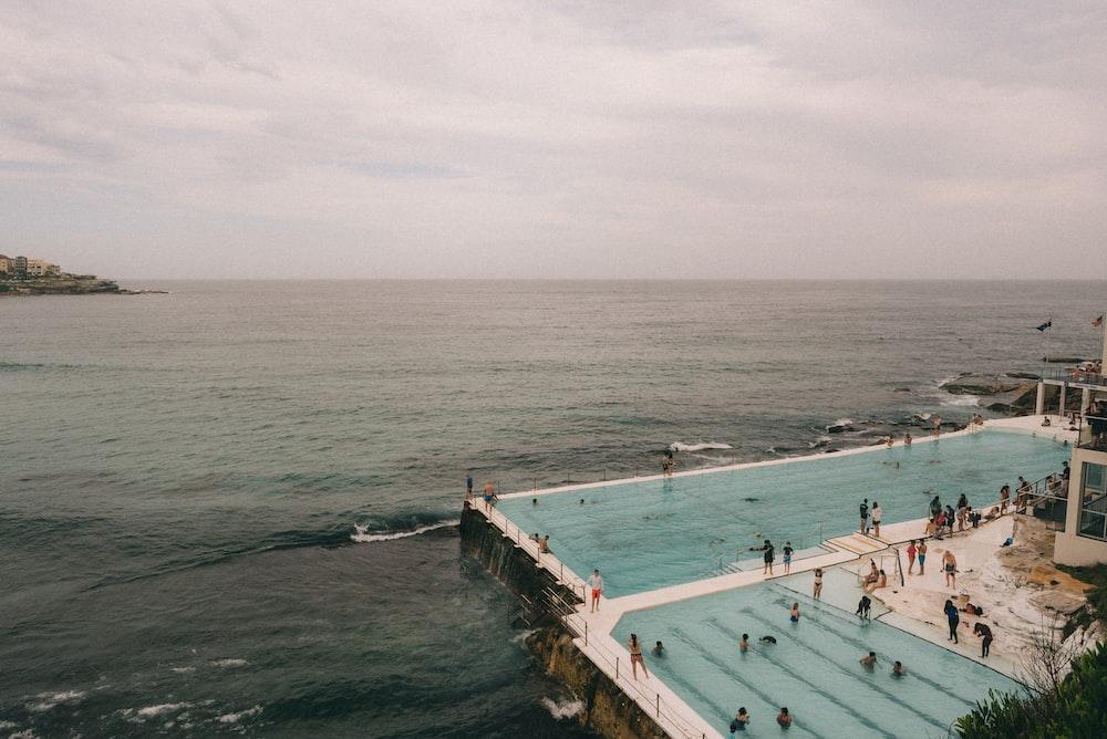 people on swimming pool beside sea