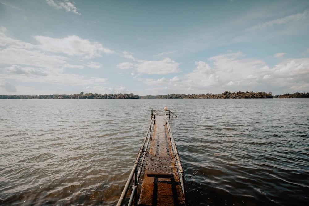 brown wooden dock during daytime