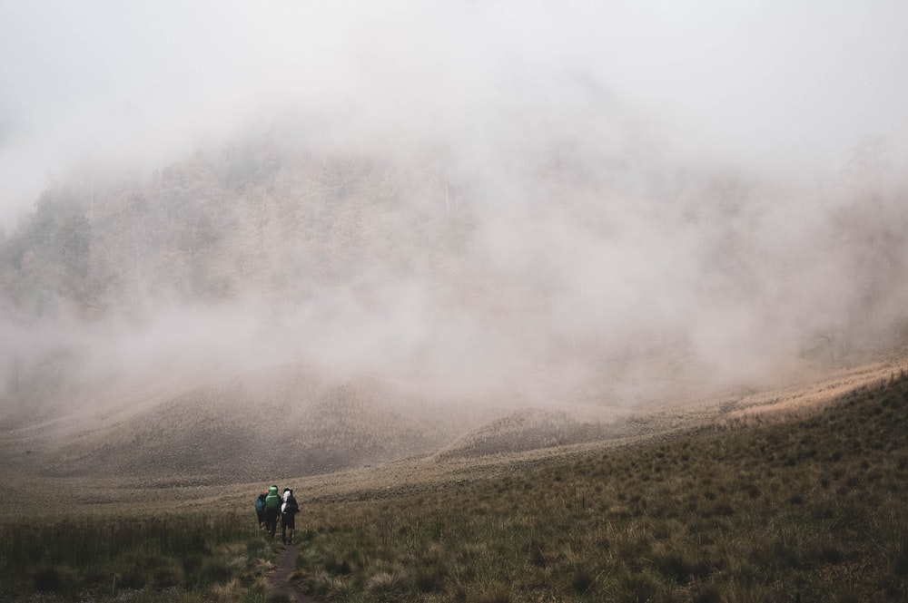 people walking on green grass field with fog background