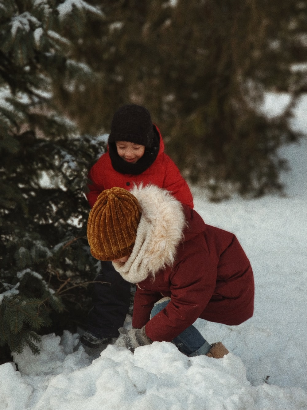 two children playing with snow near tree