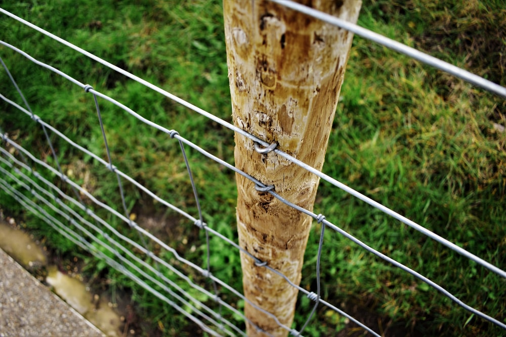 brown wooden post with gray metal wires