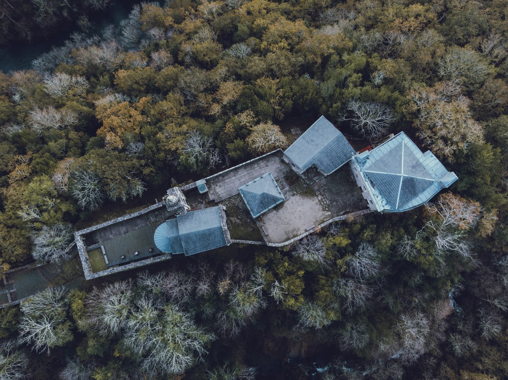 aerial view of trees and building