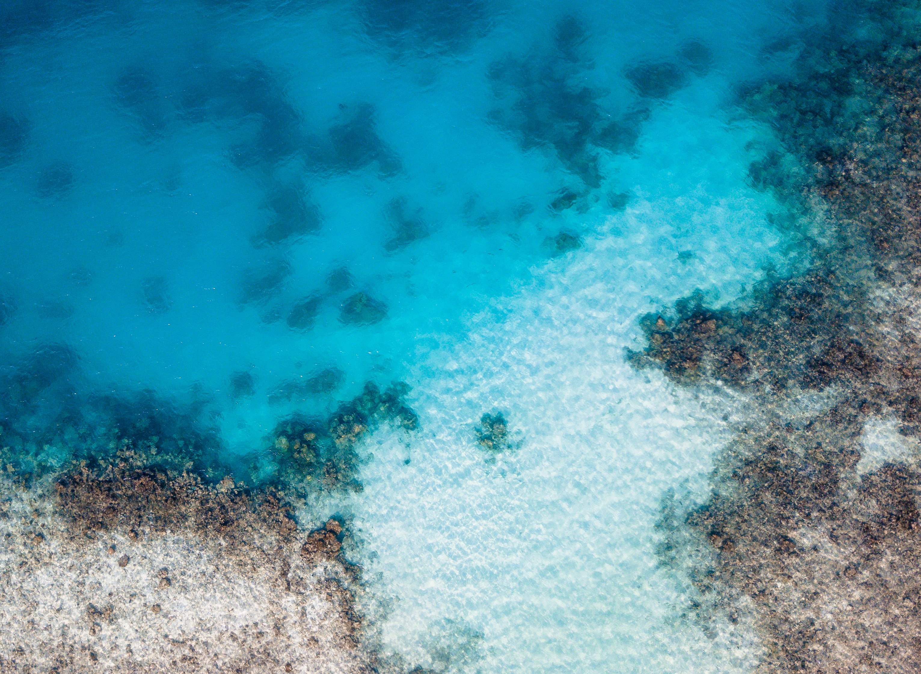 aerial view photography of blue sea