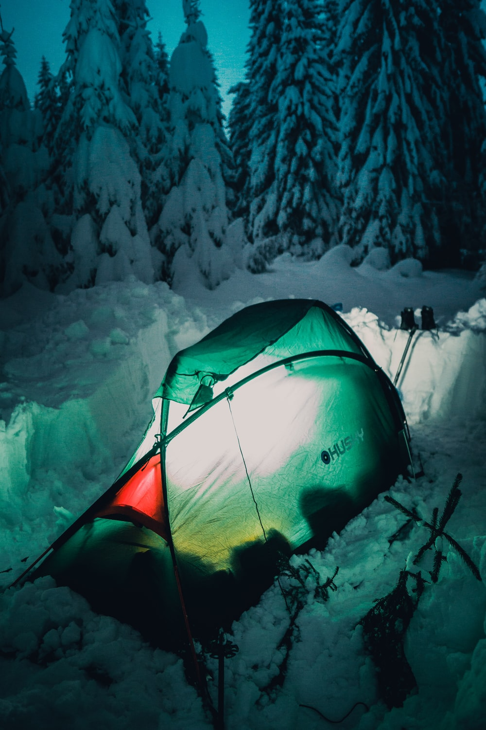 green tent near pine trees during winter