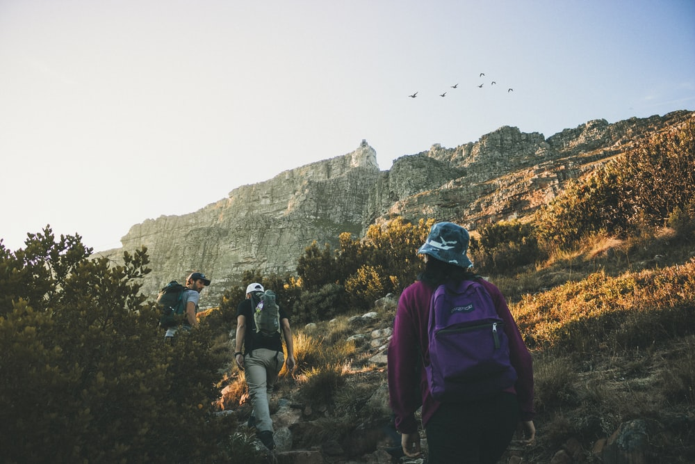 person carrying purple Jansport backpack across gray cliffs