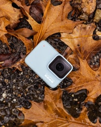 grey GoPro camera beside brown dried leaves on ground