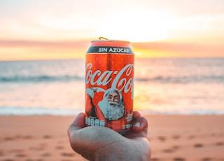 Coca-Cola can fronting sea