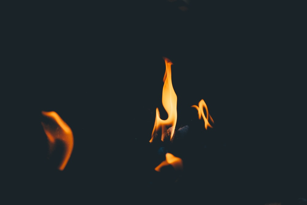 orange fire in silhouette photography