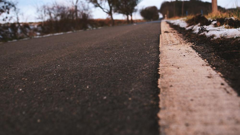 gray concrete road beside trees