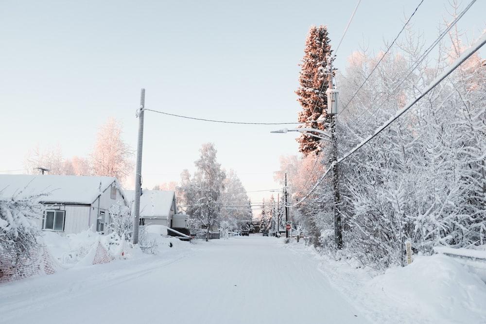 snowfield near house