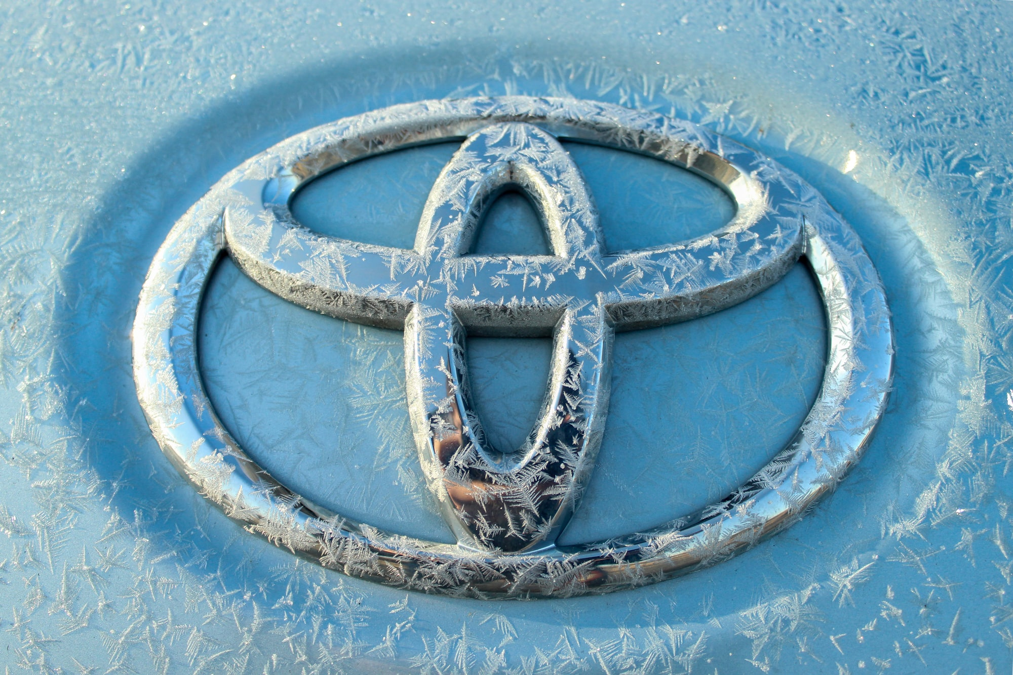 Toyota Emblem in Frost