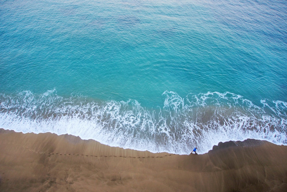 bird's-eye view photography of person walking on beach