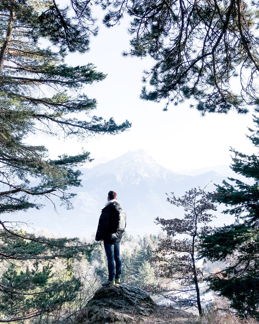 man standing on cliff beside trees