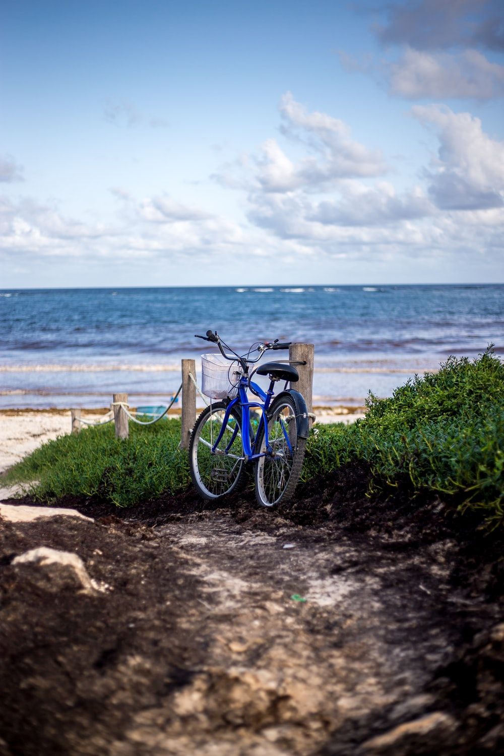 blue bicycle on seashore under cloudy sky