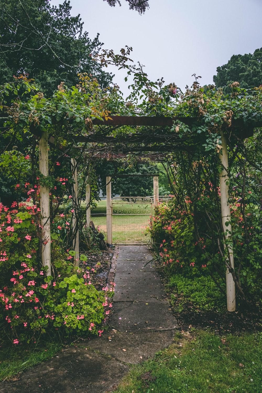white and brown wooden garden arbor