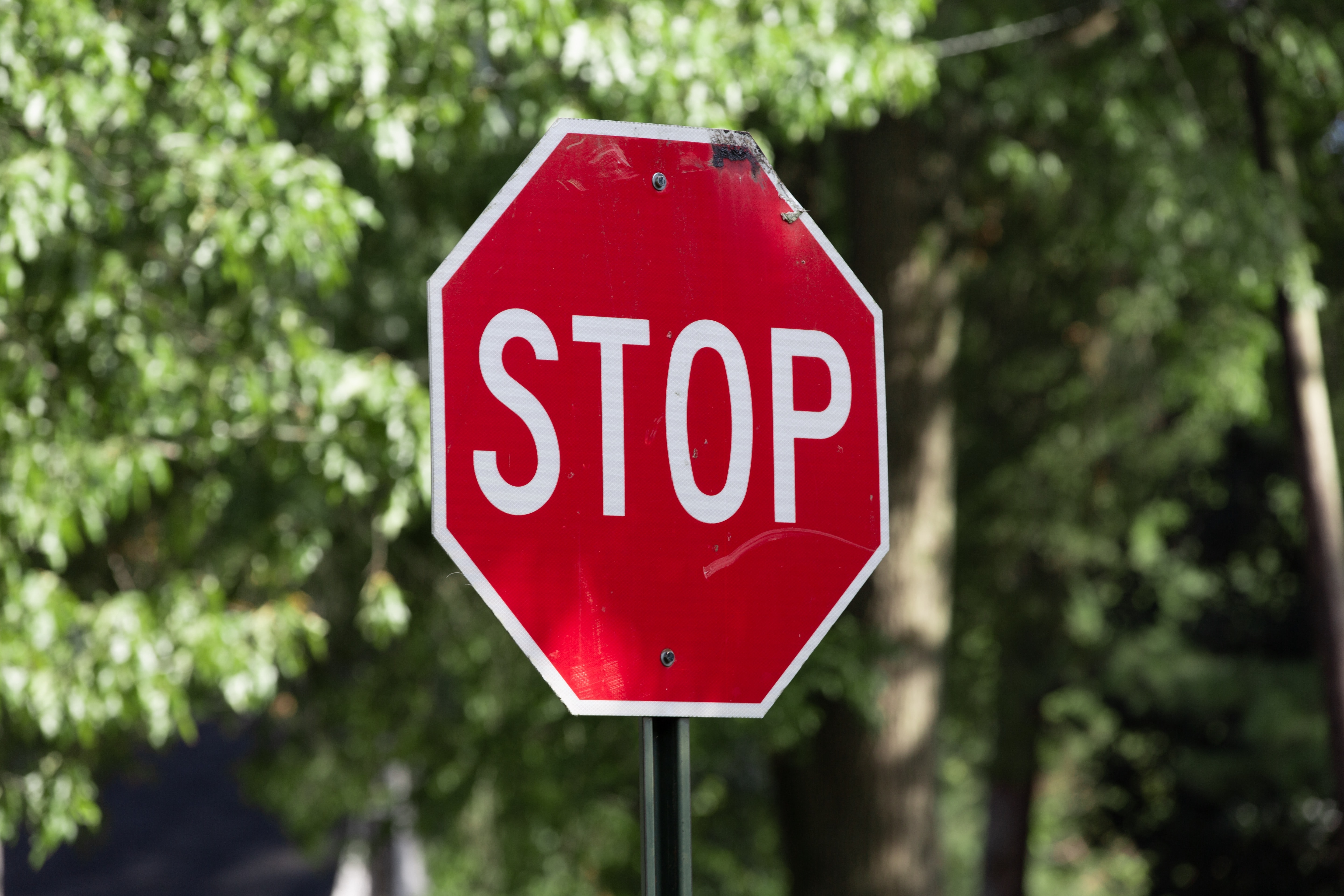 The Stop Sign On Botsford Road