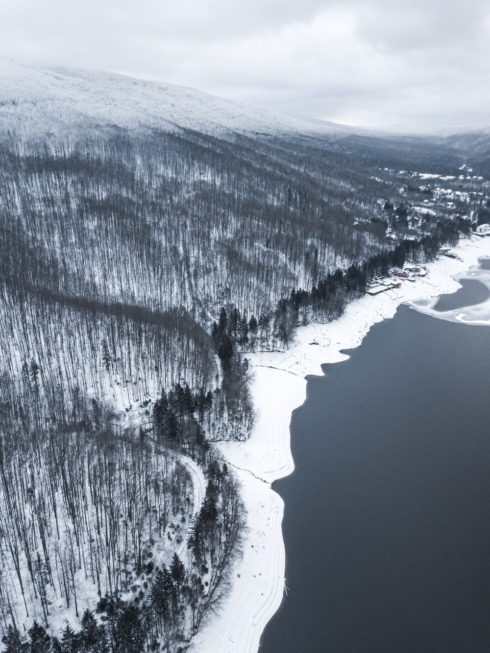 aerial view photography of body of water and forest