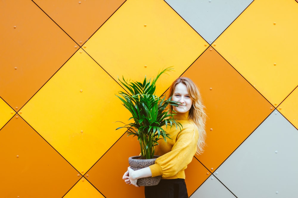 woman holding green-leafed plant in front of yellow wall