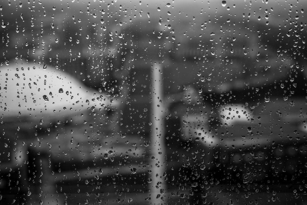 close-up photo of raindrops