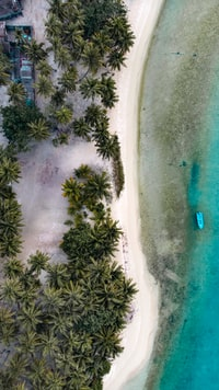 aerial photography of blue beach and island