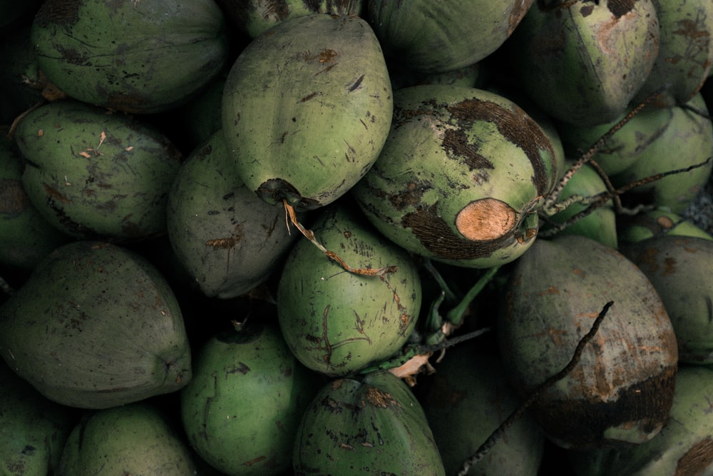 pile of coconuts